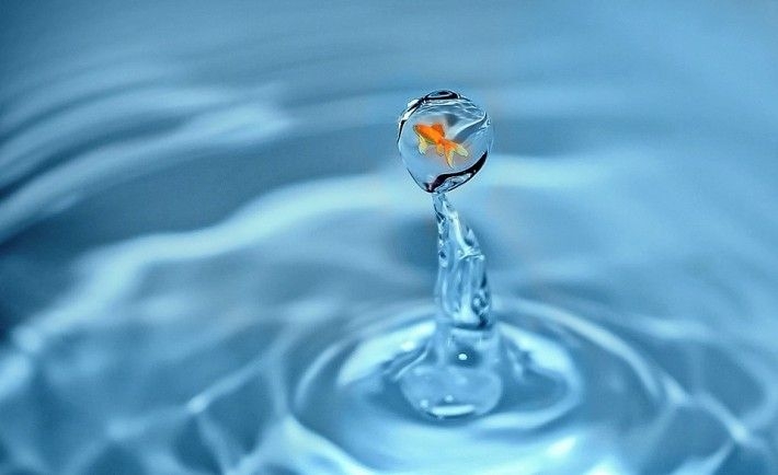 drop-of-water-1302535_960_720