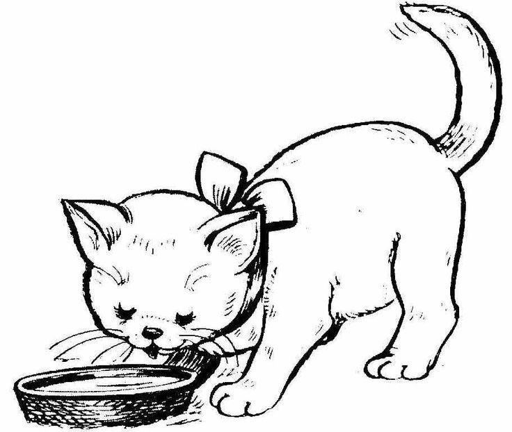 Раскраски котята | Katzen, Kostenlos