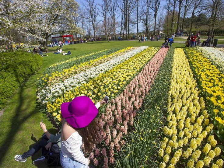 Sjekk gradestokken - og møt våren i Europa - Aftenposten