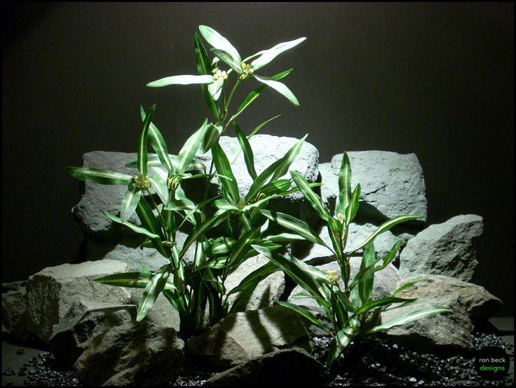 silk aquarium plant dracena greens sarp123 from ron beck designs | ronbeckdesigns.com #ron_beck_designs #aquarium #plant #decor #artificial #reptile #Reptile #Terrarium