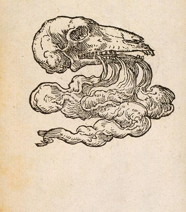 magictransistor:  Claude Paradin. Devises Héroïques. 1551.