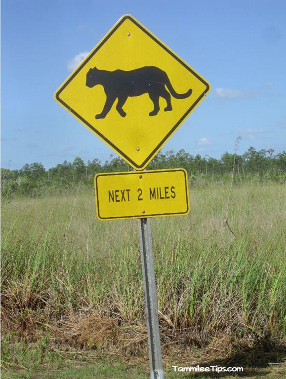 Everglades-National-Park-Panther-Sign.png