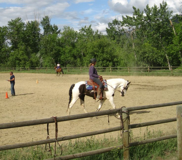 riding clinic