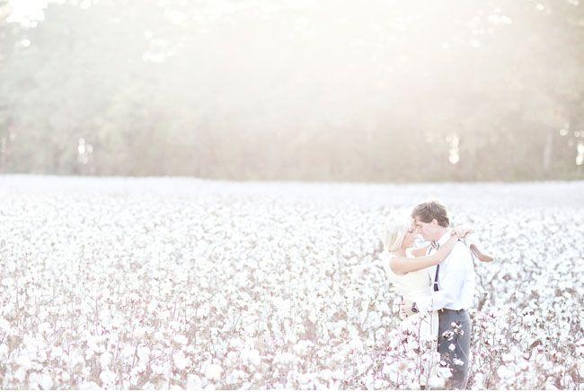 Cotton field engagement