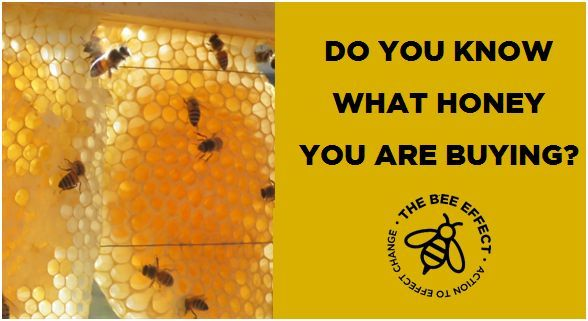 Imported vs Local #Bees, #BuyLocal, #Honey, #HoneyBees, #ProudlySouthAfrican, #TheBeeEffect