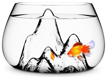 Fishscape Fish Bowl - modern - pet accessories . Even my pet fish needs to be modernized in this room :)
