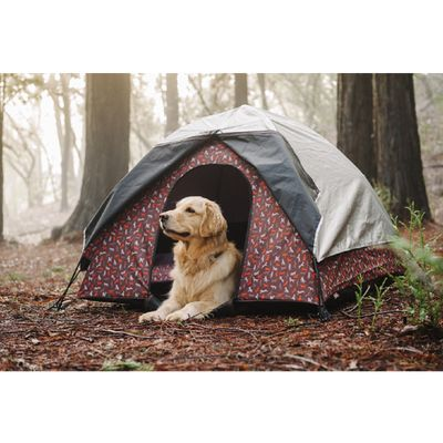 Scout and About Outdoor Dog Tent - Perfect for camping!