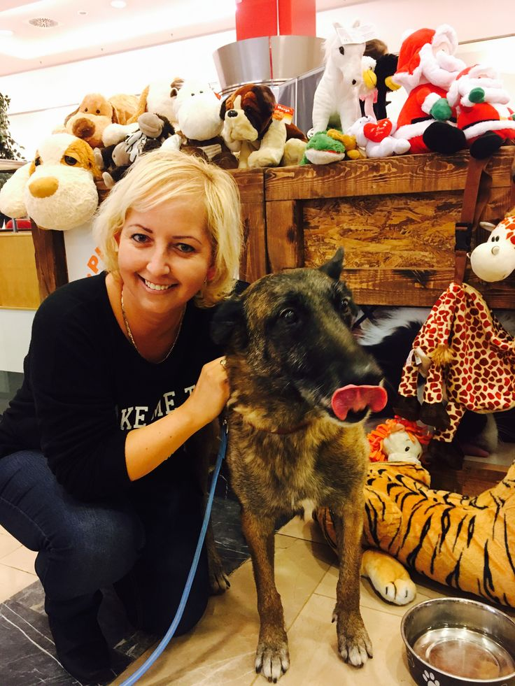 #ebugatta #kutya #dog #dogs_of_instagram #instagramdogs #dogstagram #dogoftheday #lovedogs #hound #doglover #instadog #dogface #dogsofinstagram