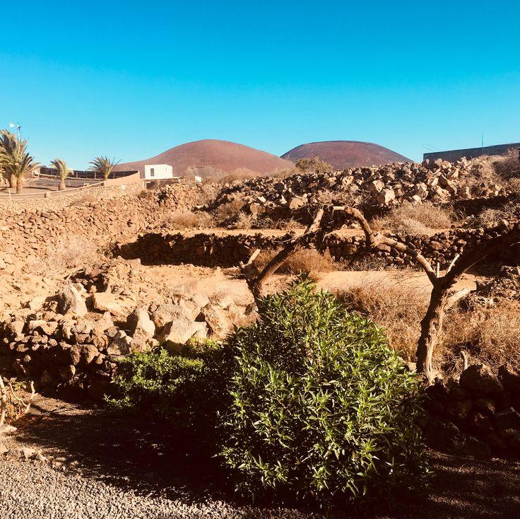 Lajares, Fuerteventura