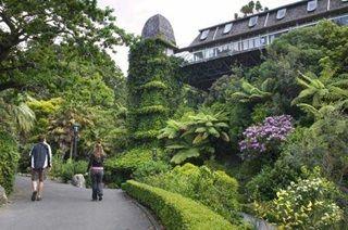 Botanic Garden walkway.