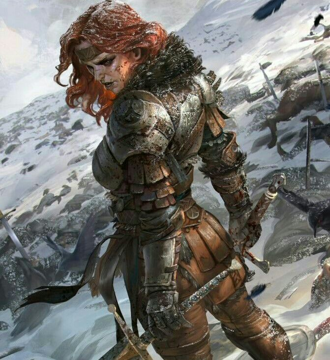 Female Fighter - Pathfinder PFRPG DND D&D d20 fantasy
