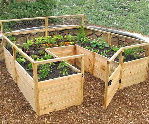 6. Get A 'U' Shaped Garden Bed Kit with a Small Gate and Surrounding Fence.