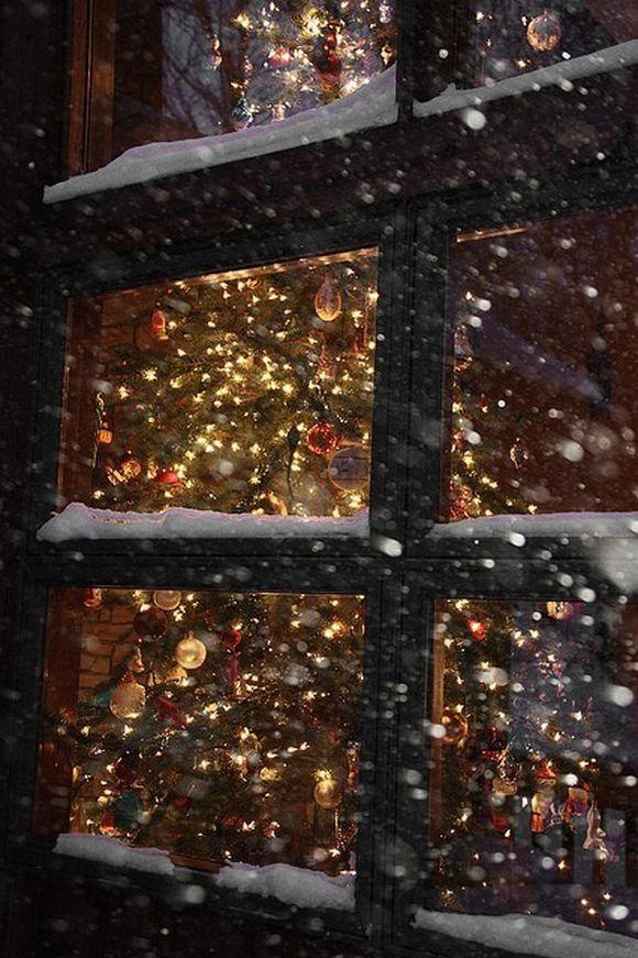 Christmas tree lights through snowy window