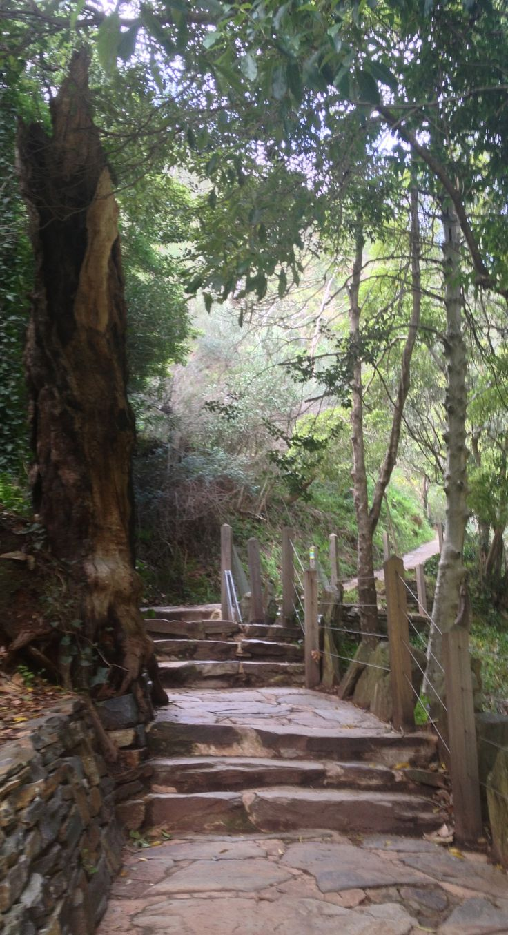 Mount Lofty hike #relaxwithsussan