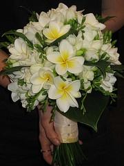 Frangipani wedding bouquet.. HOME <3