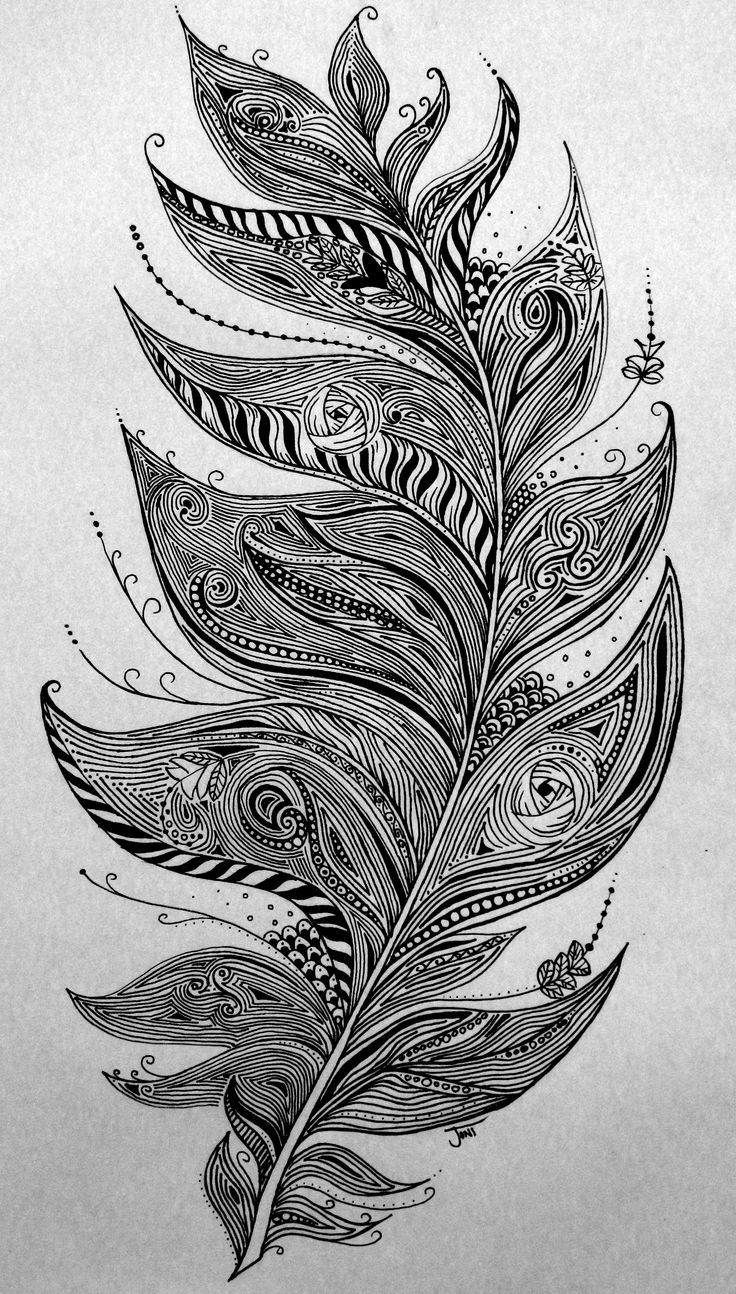 Zentangle Feather Illustration. Ink pen hand #Drawing  www.facebook.com/jonismithart to buy any of my art or art prints