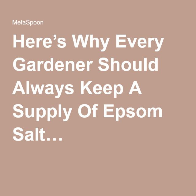 Here's Why Every Gardener Should Always Keep A Supply Of Epsom Salt…