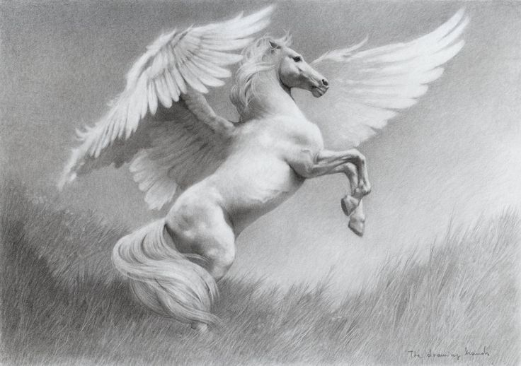 PEGASUS (Ancient Greek: Πήγασος, Pégasos; Latin: Pegasus) is one of the best known creatures in Greek mythology. He is a winged divine stallion usually depicted as pure white in color. He was sired by Poseidon, in his role as horse-god, and foaled by the Gorgon Medusa.