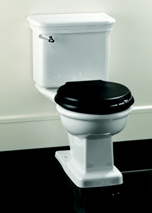 White Toilet With Black Seat. I like the black toilet seat 15 best Black Toilet Seats images on Pinterest