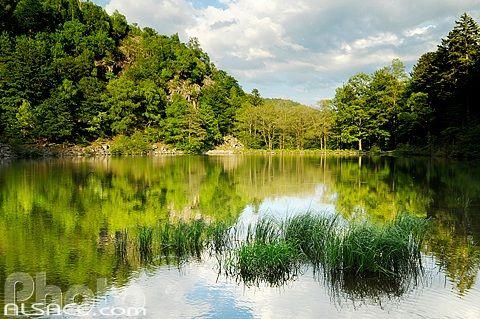 LAC GRAND ET PETIT NEUWEIHER (VOSGES) (HAUT-RHIN) sont 2 lacs situés aux confins des communes de Rimbach et d'Oberbruck. Il s'agit de lacs de moyenne altitude dans le massif des Vosges et plus particulièrement le massif de la Haute Bers, sous-ensemble intercalé entre le massif du Ballon d'Alsace et celui du Rossberg. Le barrage du lac aval (le Petit Neuweiher) est à 810 mètres d'altitude. Type : lac de barrage, Superficie : 3,4 ha, Altitude: 824m, Profondeur: 12.40m