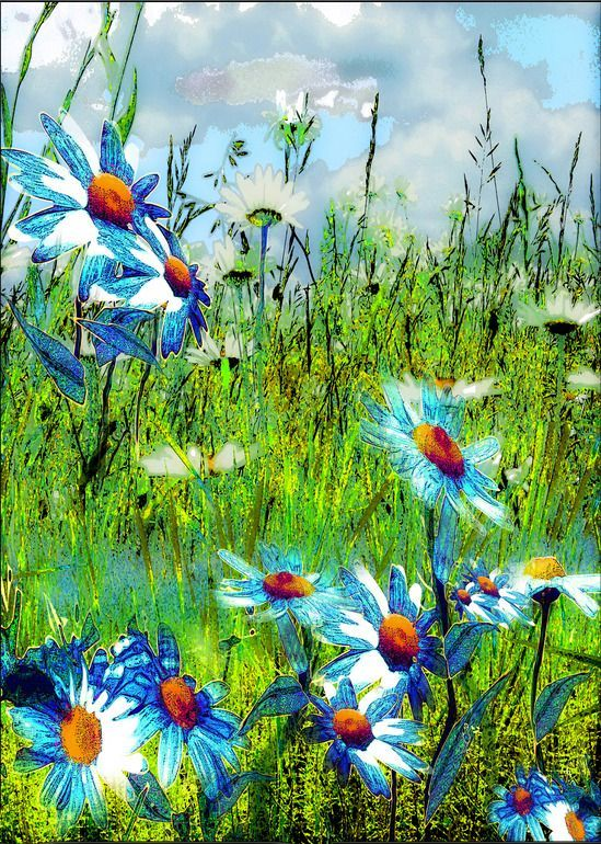 "Artist: Anne Weirich; Mixed Media, Painting ""Blue Marguerites"""