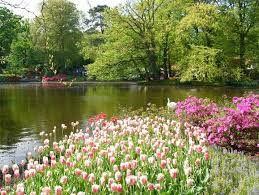 Risultati immagini per tavaszi tájképek