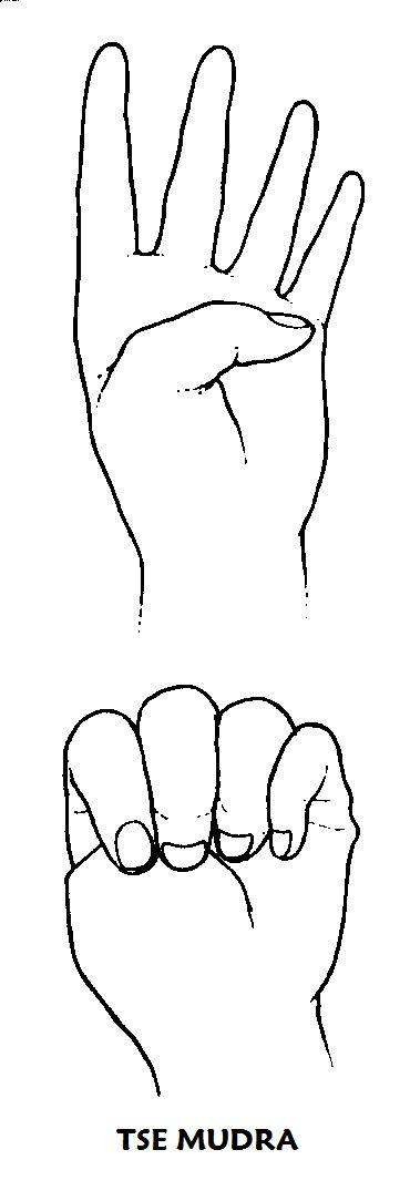 """#tse #mudra Colocar las manos sobre los muslos. Doblar el pulgar hasta tocar la raíz del meñique y cerrar despacio los cuatro dedos restantes sobre el pulgar, mientras lentamente toma aire por la nariz. Contener la respiración y entonar 7 veces en su mente el """"OM"""", percibiendo la vibración en el oído derecho. Exhalar el aire despacio, contrayendo con fuerza el abdomen. Abrir de nuevo las manos e imaginar que las preocupaciones abandonan su cuerpo. Repetir de 7 a 49 veces o como mínimo 7…"""