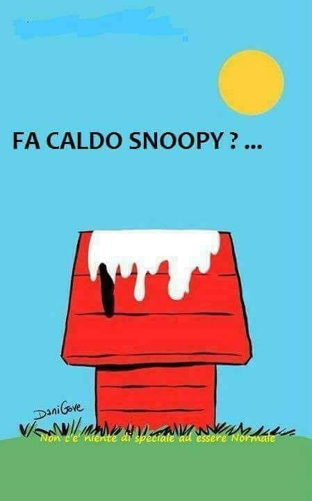 18434 Fa Caldo Snoopy???