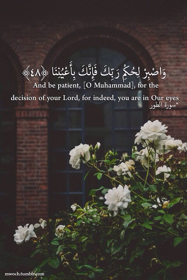 Quran (52:48) وَاصْبِرْ لِحُكْمِ رَبِّكَ فَإِنَّكَ بِأَعْيُنِنَا ۖ وَسَبِّحْ بِحَمْدِ رَبِّكَ حِينَ تَقُومُ ﴿٤٨﴾ سورة الطور And be patient, [O Muhammad], for the decision of your Lord, for indeed, you are in Our eyes. And exalt [ Allah ] with praise of your Lord when you arise