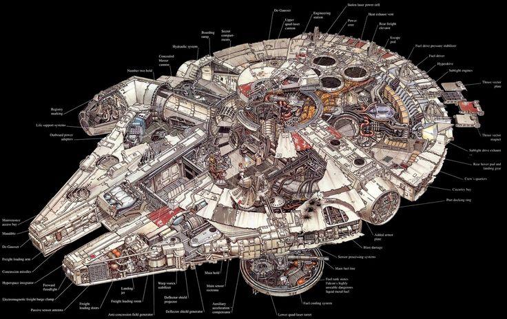 Falcon cutaway