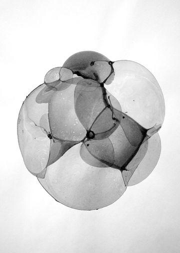 Bubble Drawings by Charlotte X. C. Sullivan: Graphic, Bubble Drawings, Art, Illustration, Bubbles, Charlotte, Photography, Black, Sullivan