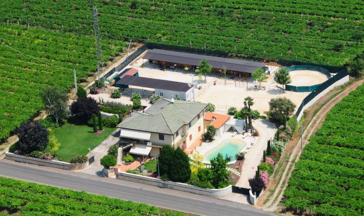 Casa Costa Relais B&B | Struttura dotata di ampio giardino privato e piscina bio design perfetto per trascorrere qualche ora o lunghi periodi sdraiati al sole e in relax. | Presente su www.BedAndBreakfastItalia.com #BnBItalia #BnBVeneto #BnB #BedAndBreakfast #BeB #BeBItalia #BeBVeneto