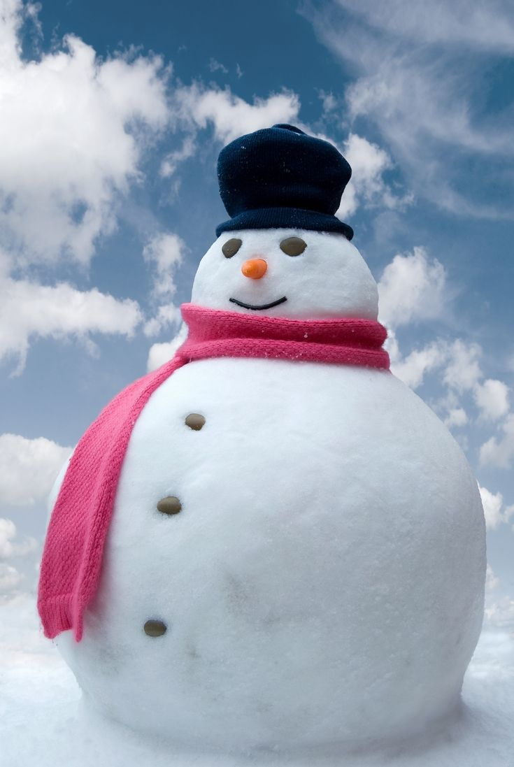 8 best Snow men and ladies images on Pinterest  Christmas