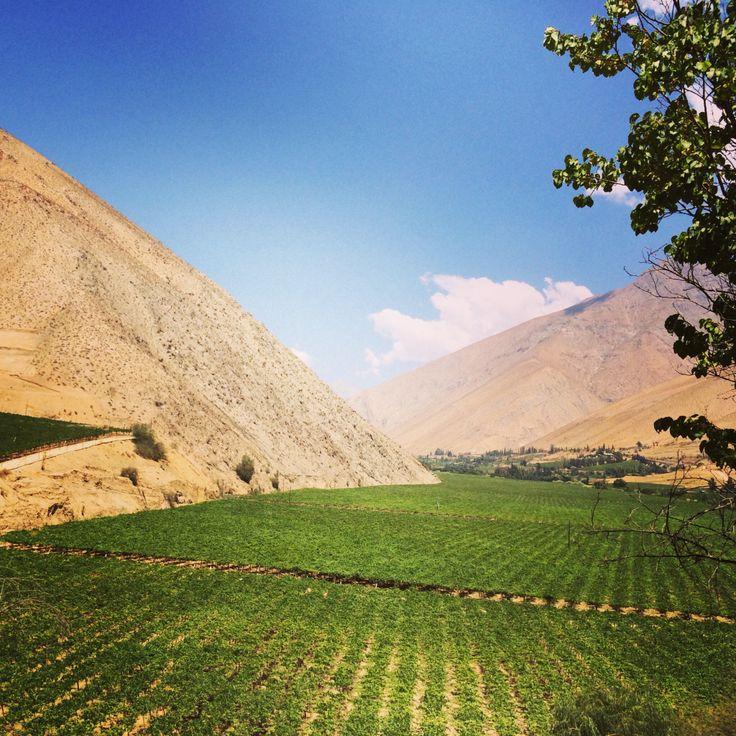 Valle del Elqui Chile - Elqui Valley