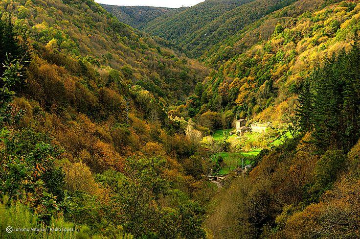 As Veigas #Taramundi #Asturias #ParaísoNatural #NaturalParadise #Spain