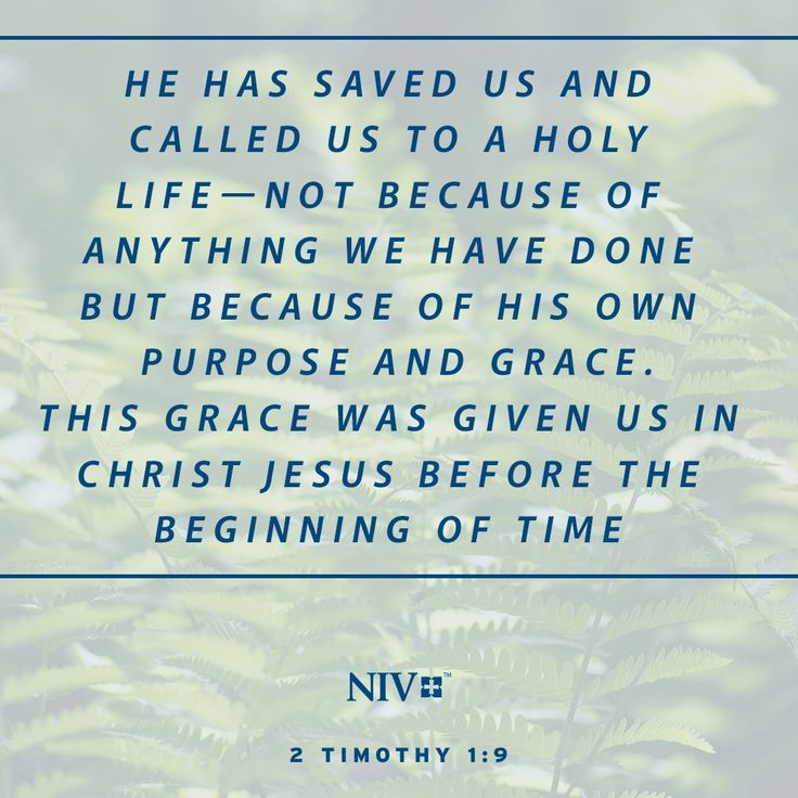 NIV Verse of the Day: 2 Timothy 1:9