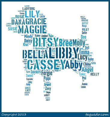 Girl Dog Names at Miracle Shih Tzu