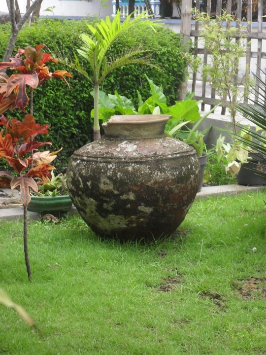 """Element of my garden """"Genthong"""""""