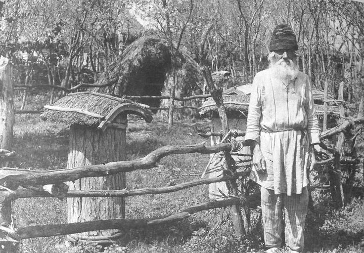 An old beekeeper, Zadonsk County, Voronezh Province, 1908.