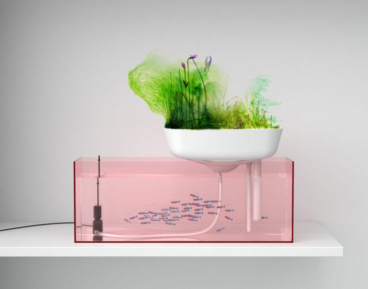 """Floatting Garden"", aquaponic system, by Benjamin Graindorge — 2009"