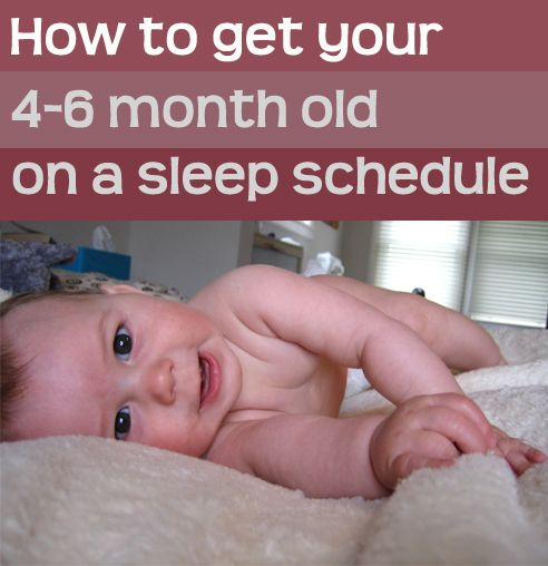 By the time your baby is between 4 and 6 months of age, you likely want to start getting a little more consistency into your baby's schedule. See our latest post on Rookie Moms with tips on how to help your 4-6 month old baby eat and nap more predictably, and while you're there, enter to win a Express Sleep Plan!