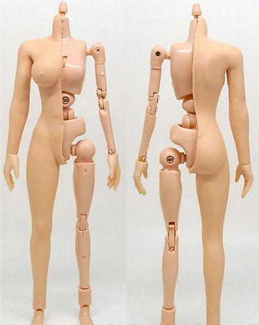 Toy body play female