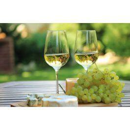 Degustacja wina i wizyta w winnicy dla Dwojga