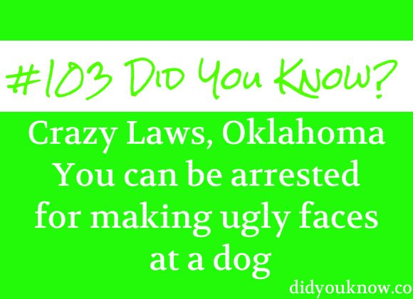 Crazy laws in oklahoma