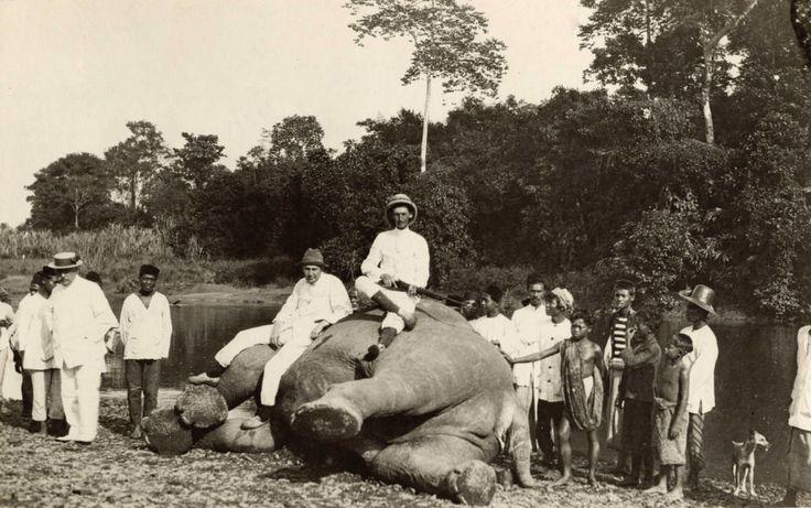 Olifantenjacht aan de oostkust van Sumatra, 1920.