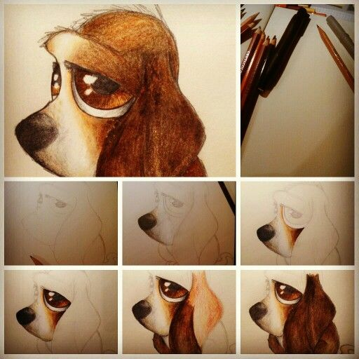 Basset dog.  Crayons and pencil. A4 size. Step by step