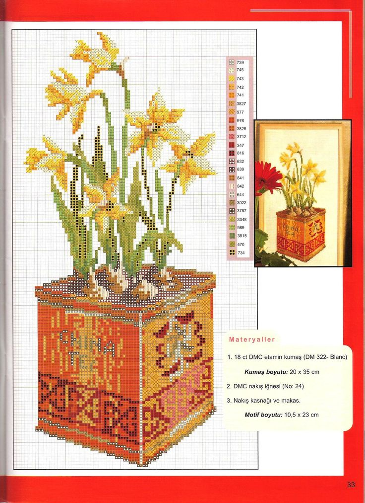flowers in tins 4
