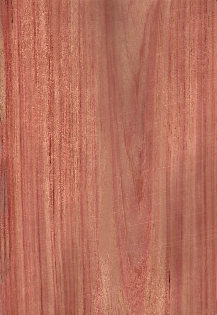 Bois de rose bois wood pinterest cabinet makers roses and woods for Chambre bois de rose