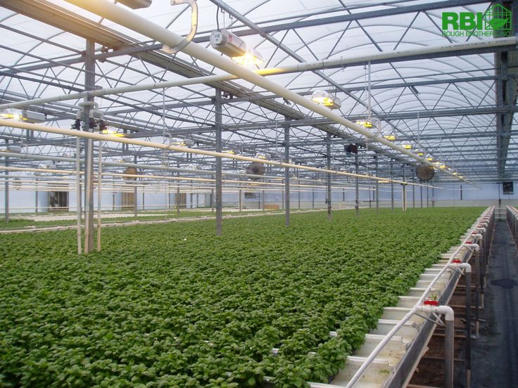 19 Best Images About Commercial Greenhouse Construction On Pinterest
