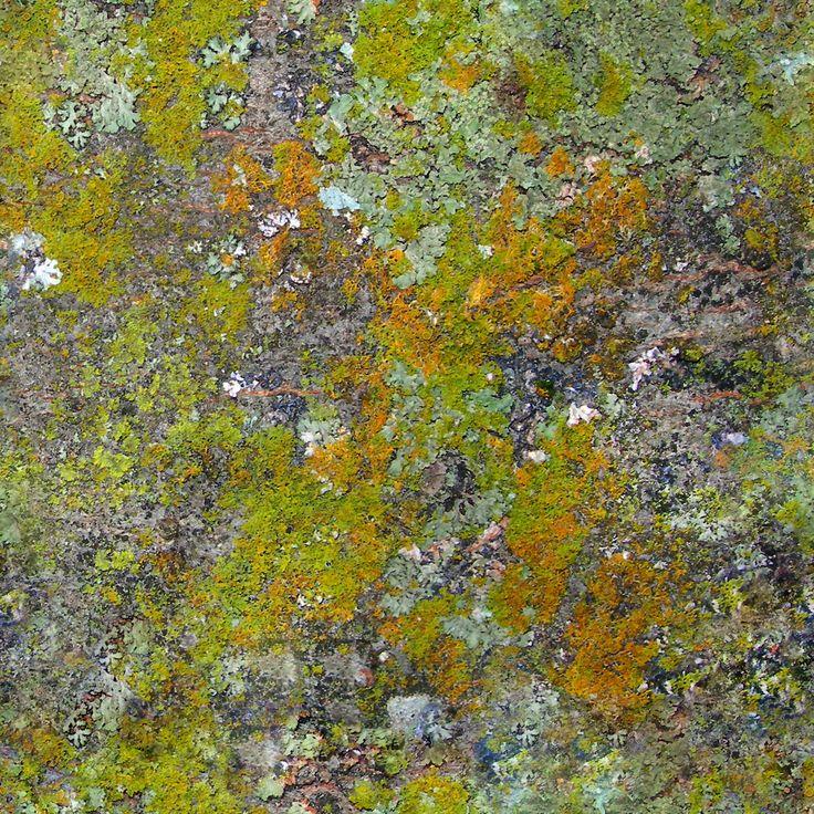 forest floor texture seamless. forest floor texture seamless